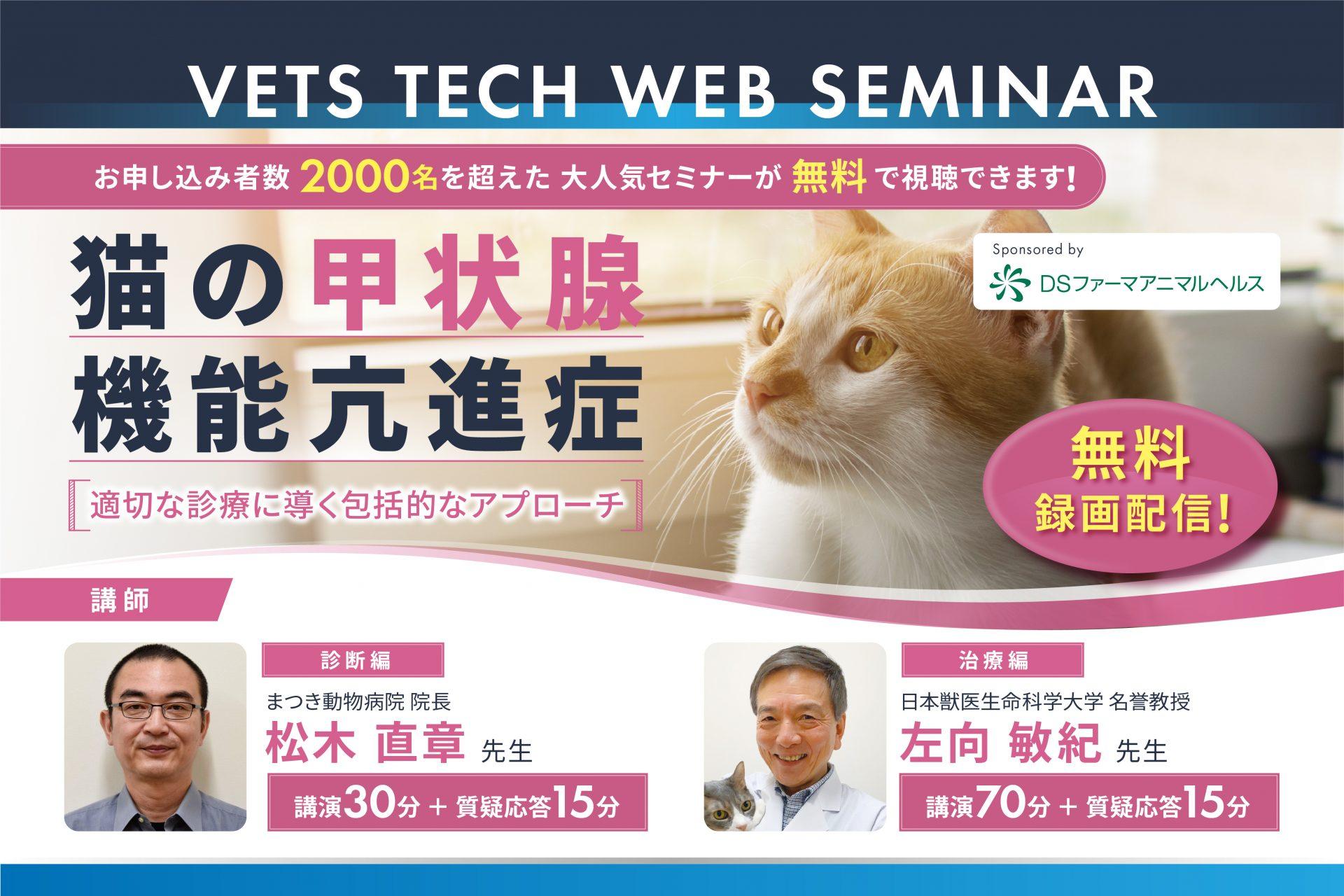 症 亢進 猫 機能 甲状腺