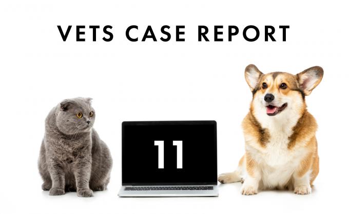 失神の原因が2種類認められたイヌ糸状虫症のイヌの1例